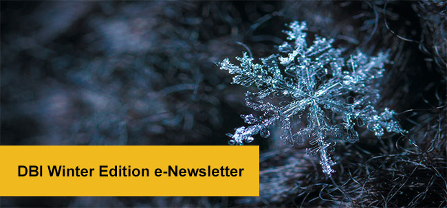 DBI Winter Edition e-Newsletter
